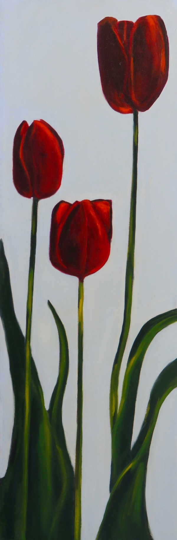THREE RED TULIPS