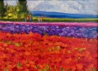 FIELDS OF COLOUR 1